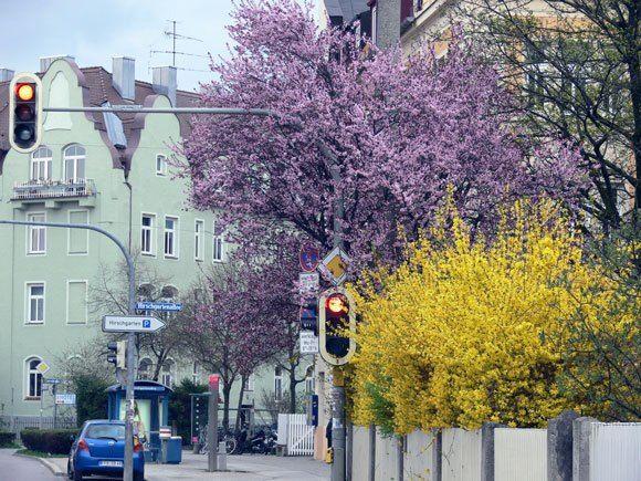 Климат Мюнхена