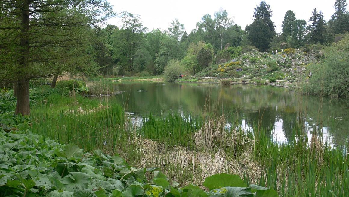 Ботанический сад Мюнхена
