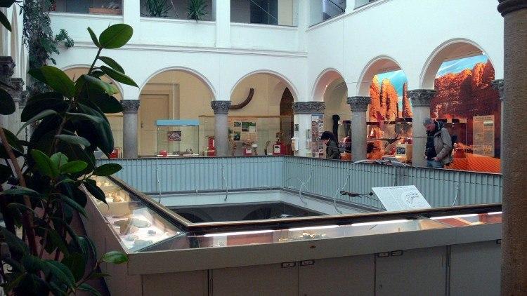 Палеонтологический Музей Мюнхена. На верхнем этаже музея.