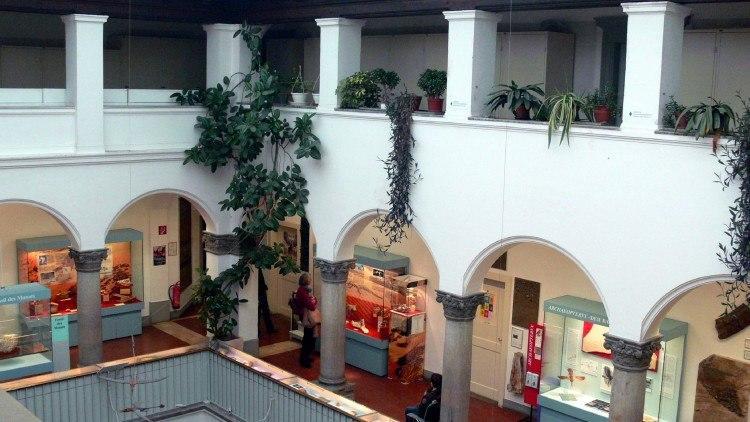 Палеонтологический Музей Мюнхена. На верхних этажах музея.