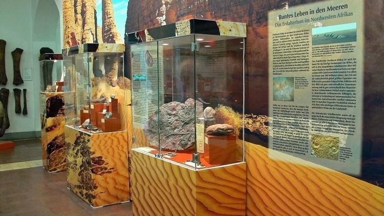 Палеонтологический Музей Мюнхена. Рассказ о происхождении жизни на Земле.