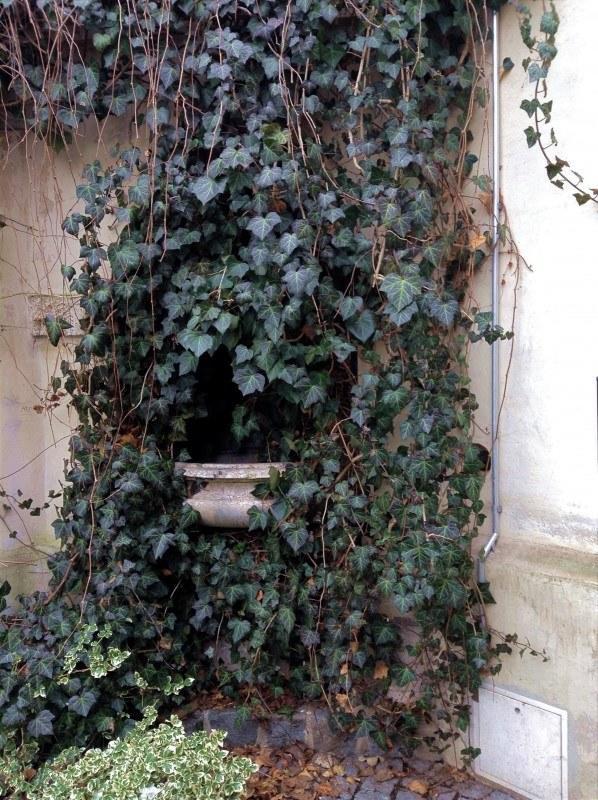В замке Блютенбург