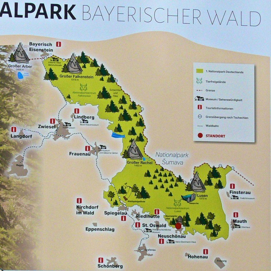 bayern 04 wald